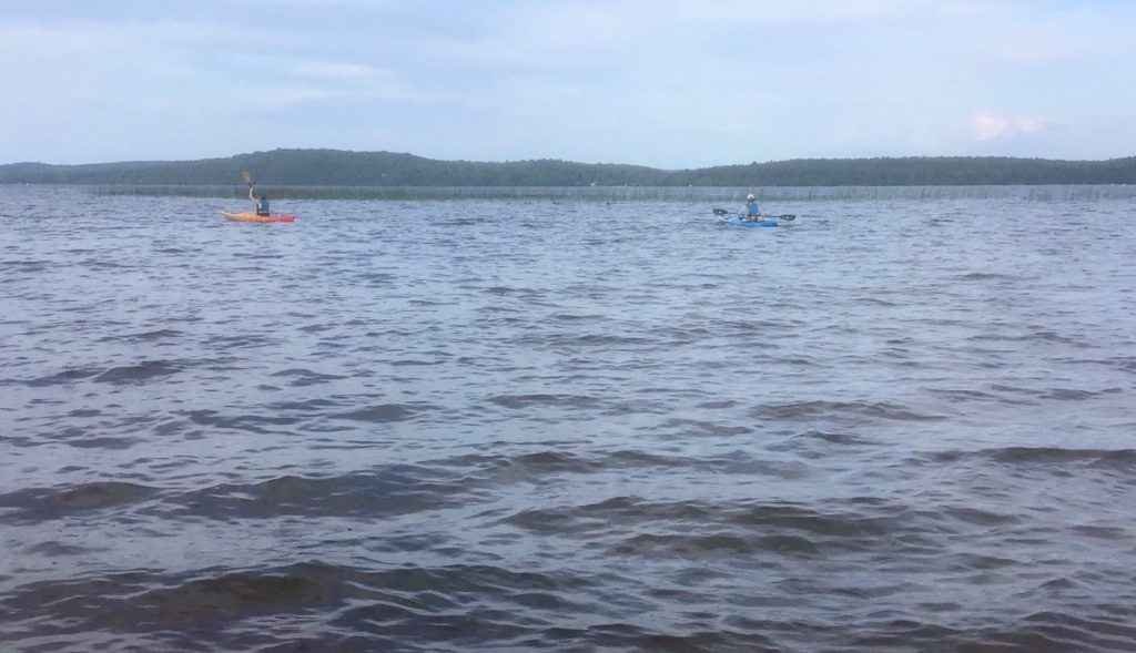 This image has an empty alt attribute; its file name is Kayaking2020-1024x589.jpg